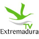 Axpress-Arte na TV